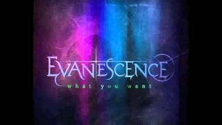 Evanescence - What You Want (Elder Jepson Remix).wmv