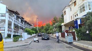 Эвакуированные из за природного пожара туристы вернулись в отели Турции Fire in Turkey