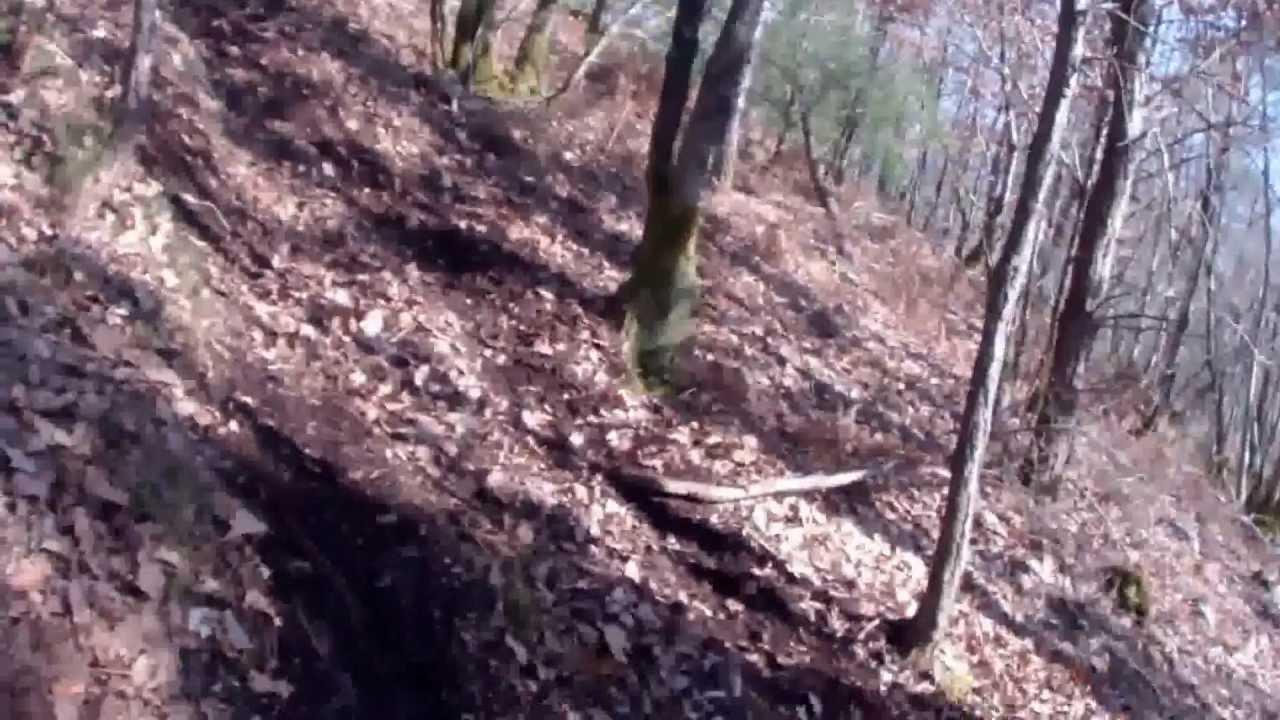 La montée infernale en bois