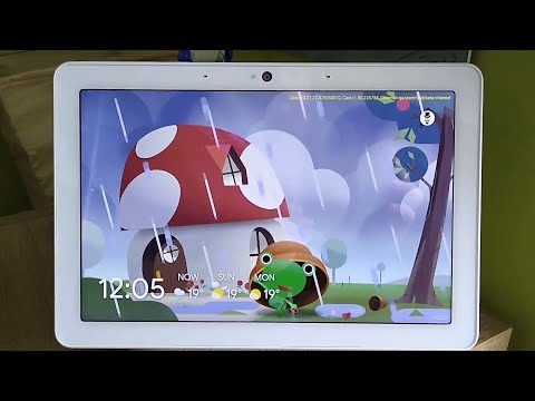 Google Weather Frog on Google Nest Hub Max
