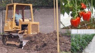 Nivelación de terreno en un invernadero para control de enfermedades en el suelo