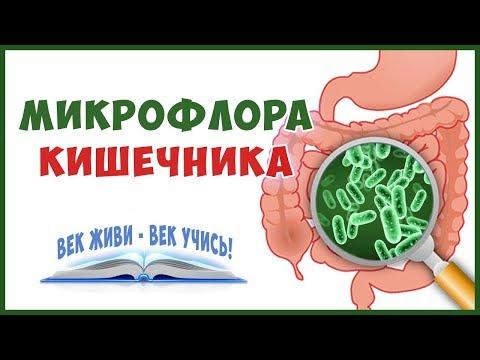 Лечение Дисбактериоза Кратко!