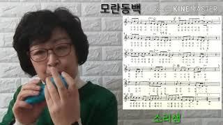 Download lagu 오카리나/모란동백/소리샘의 맛있는 오카리나 배우기