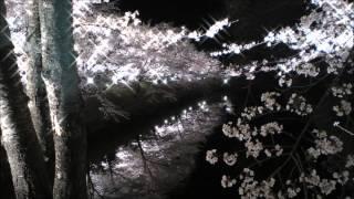 ヘンデル: オラトリオ「ソロモン」:シバの女王の入場[ナクソス・クラシック・キュレーション #おしゃれ]