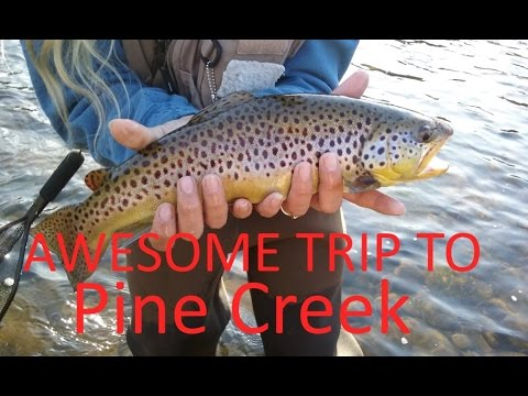 Awesome trip to Pine Creek