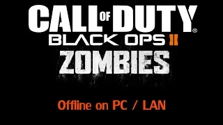 how to play bo2 zombies offline lan