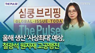 올해 생산 '사상최대' 예상, 철광석 원…