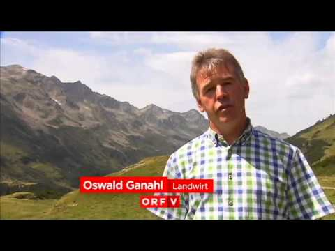 Alpwirtschaft | Natura2000 Verwall