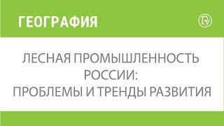 Лесная промышленность России: проблемы и тренды развития