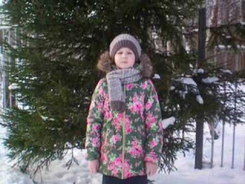 Изображение предпросмотра прочтения – ДарьяБережная читает произведение «Поёт зима— аукает…» С.А.Есенина