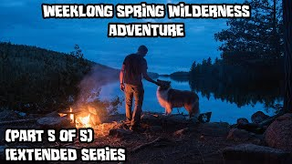 Weeklong Spring Wilderness Adventure With My Dog (Part 5 of 5) [Extended Series]