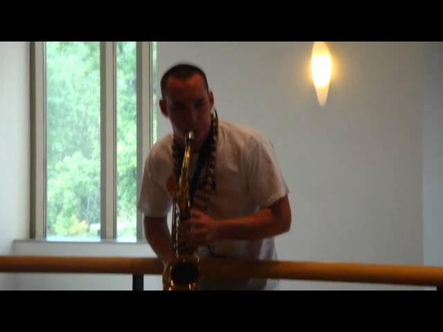 MMA! 2010 sax and guitar at atrium Travel Video