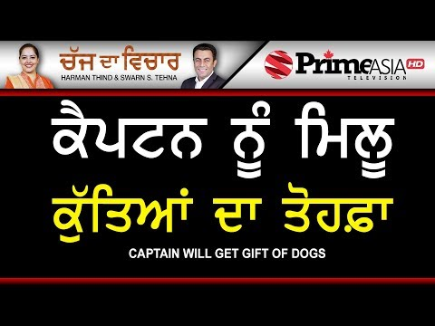 Chajj Da Vichar 697 Captain will get gift of dogs