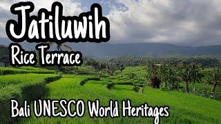 Jatiluwih Rice Terrace | Bali UNESCO World Heritages