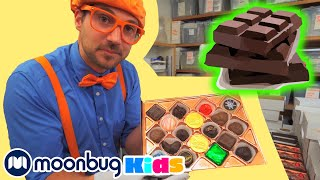 BLIPPI Visits a Chocolate Factory | Learn | ABC 123 Moonbug Kids | Fun Cartoons | Learning Rhymes