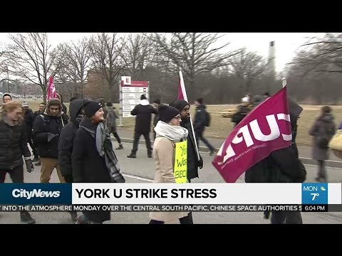 York University strike putting stress on students