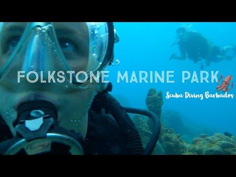 Folkstone 🦑 Marine 🐠Park 🤿 Dive 🇧🇧Barbados Welcome Stamp