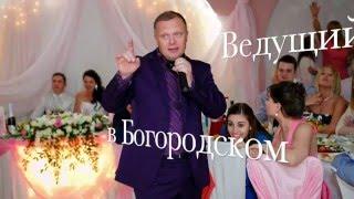 Богородское, Ведущий поющий на корпоратив, юбилей, тамада на свадьбу, баянист в Богородском.