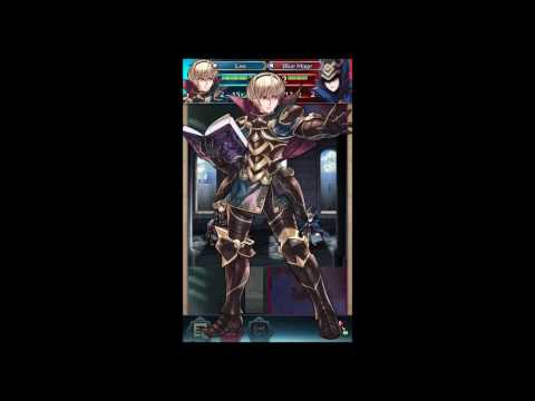 Grand Hero Battle F Robin with Leo and friends