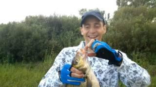Рыбалка  Беларусь Гомельская область Шерстин  Случайная поклевка на день рождения