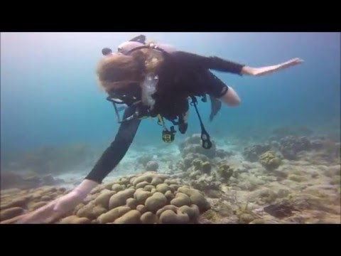 Frances Diving Bonaire 2016