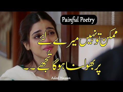 Best Urdu Poetry Collection| 2 line poetry| Hindi Shayri| Urdu Shayri| Heart Touching Poetry| thumbnail