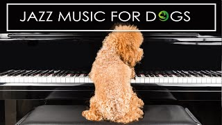Jazz Music For Dogs  Relaxing Dog Music To Calm Anxiety Vol 2