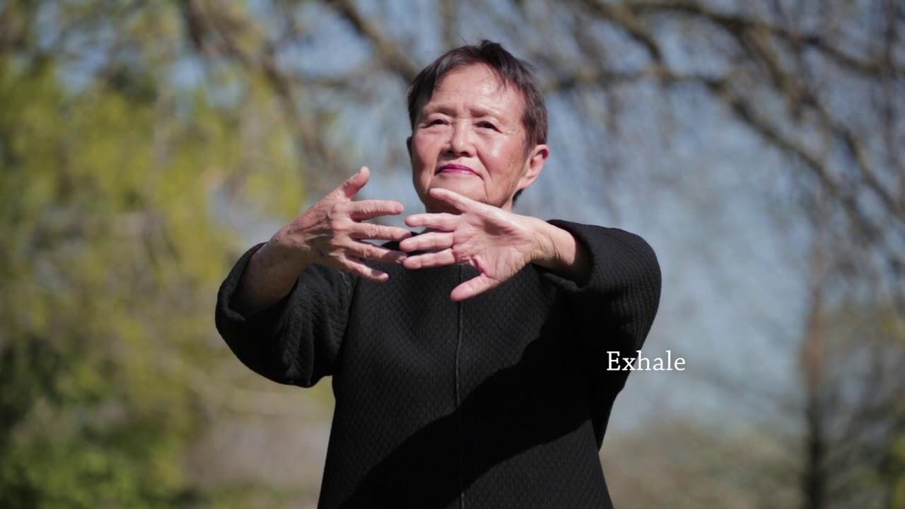 Vídeos de Qi Gong (Chi Kung)
