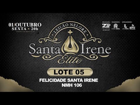 LOTE 5 NMH 106