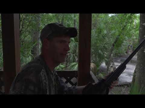 Hog Hunting In Florida - Razzor Ranch   Part 1
