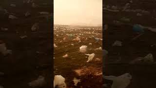 Поселок лиман вокруг свалки