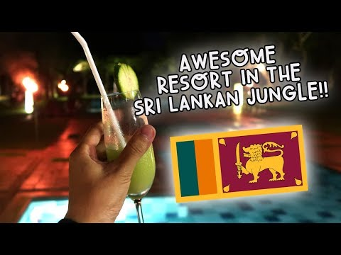 AWESOME RESORT IN THE SRI LANKAN JUNGLE! | Vlog #98