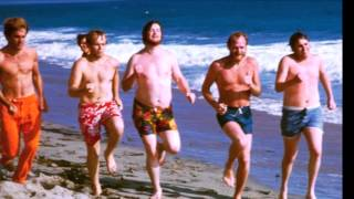 The Beach Boys And your Dreams Come True/Your Summer Dream