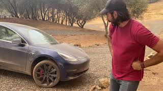 Tesla sustained damage after off-roading