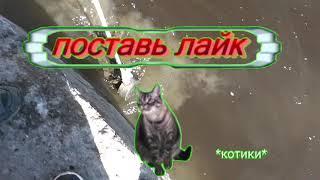 Поисковый магнит в Санкт Петербурге Ново Каменный мост отвёртка щипцы маникюрные наручники и т д