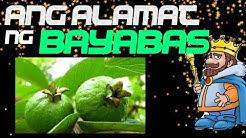 Ang Alamat ng Bayabas | Pagbasa with Audio Guide