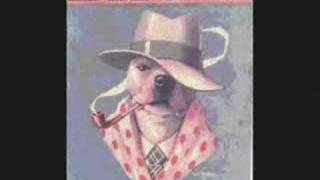 Man's Best Friend: The True American Pit Bull Terrier