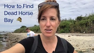 How to Find the Unusual Beach at Dead Horse Bay in New York