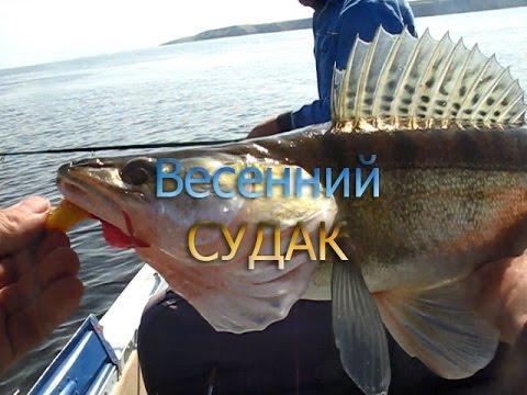 Рыбалка спиннингом . Ловля судака весной. 19.04.2016.