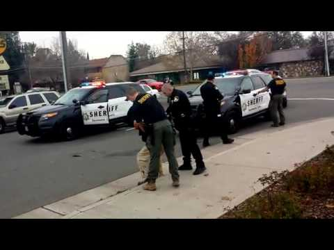 Sacramento County deputy beating man with a flashlight, (Citizen Journalist)