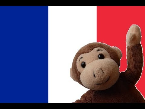 Globe Monkey goes to Paris