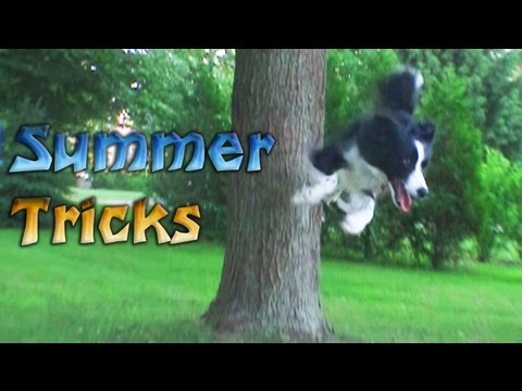 Nana's Summer Tricks