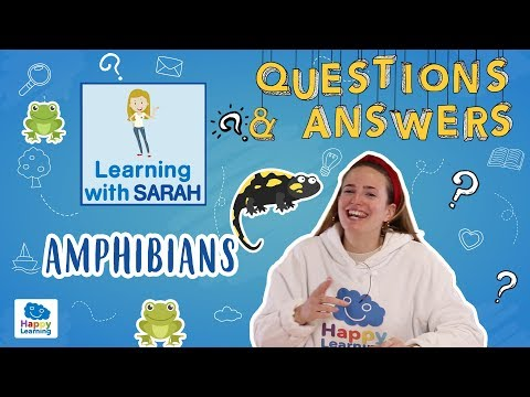 🎮q&a-game-amphibians:-let's-play-|-learning-with-sarah-|-educational-videos