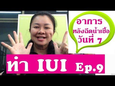 ทำ iui Ep.9 (แม่จาร์เล่าอาการหลังฉีดน้ำเชื้อ วันที่ 7)