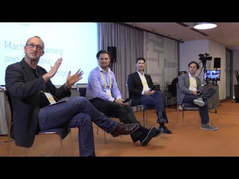 Is machine learning a game changer in marketing? Perspectives and limitations (Panel 3)