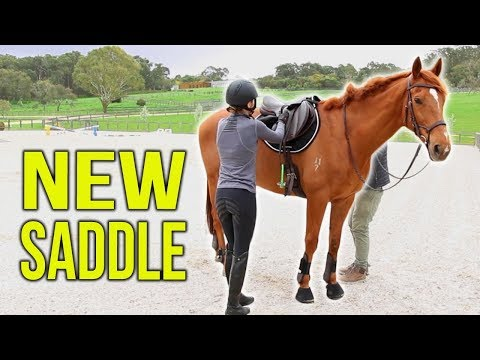 TACK HAUL | New Jumping Saddle!