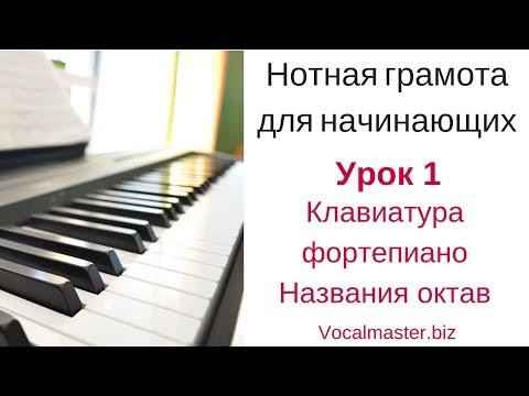 Нотная грамота для начинающих фортепиано видео уроки для начинающих