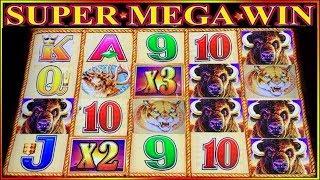 SUPER MEGA WIN | BUFFALO GOLD COIN SHOW | CRAZY SPINS | SLOT MACHINE