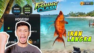Mencari Ikan Langka di Game Fishing Clash  │ Fishing Clash Gameplay screenshot 3