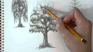 Как нарисовать листву деревьев(Урок для начинающих о том, как нарисовать листву деревьев: http://aniop.ru/listva/ Начало о том, как нарисовать сами..., 2013-03-15T17:15:03.000Z)